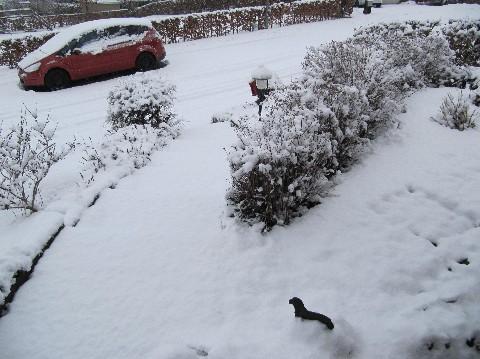 winter2010-011-mittlere-webansicht.jpg