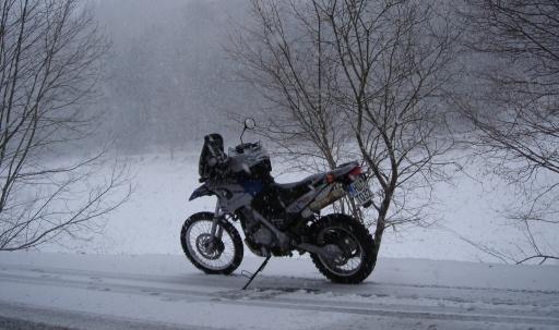 winter_1.5_951.jpg