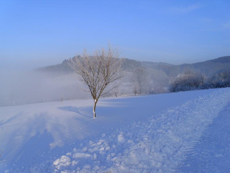 winterbilder-037.jpg