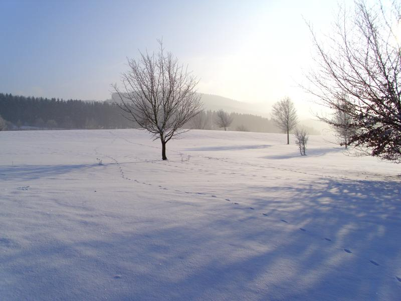 winterbilder-047.jpg