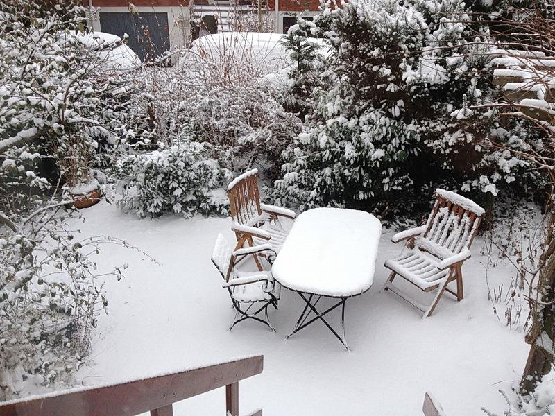 wintergarten5ordq.jpg